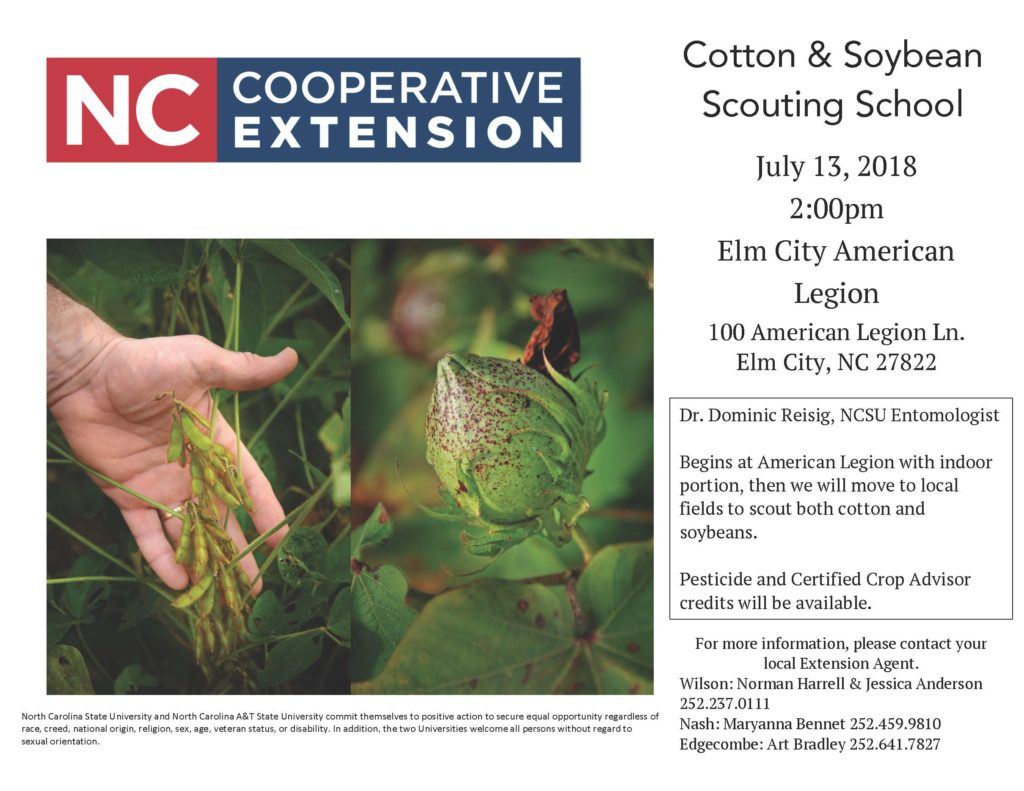 Cotton and Soybean Scouting School flyer image