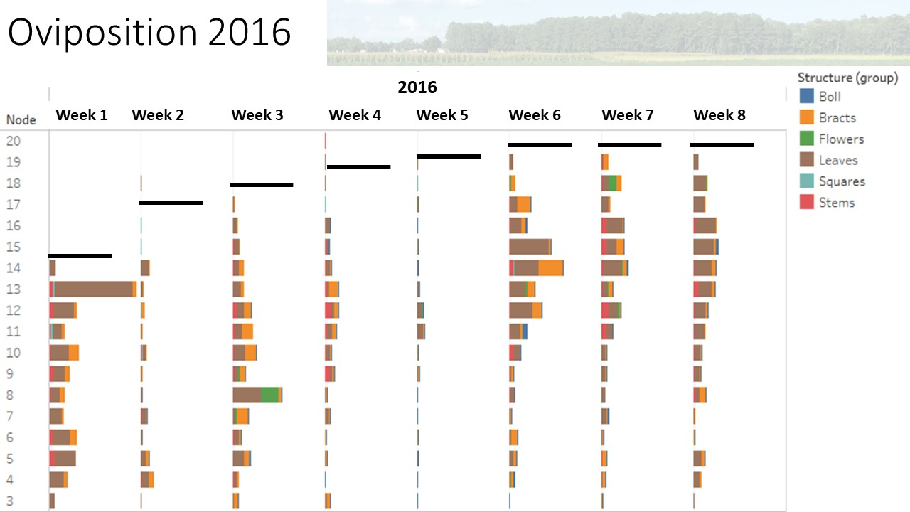 2016 chart image