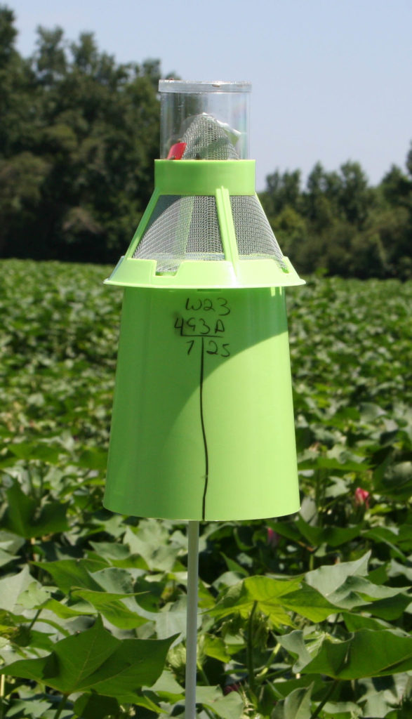 Boll weevil trap