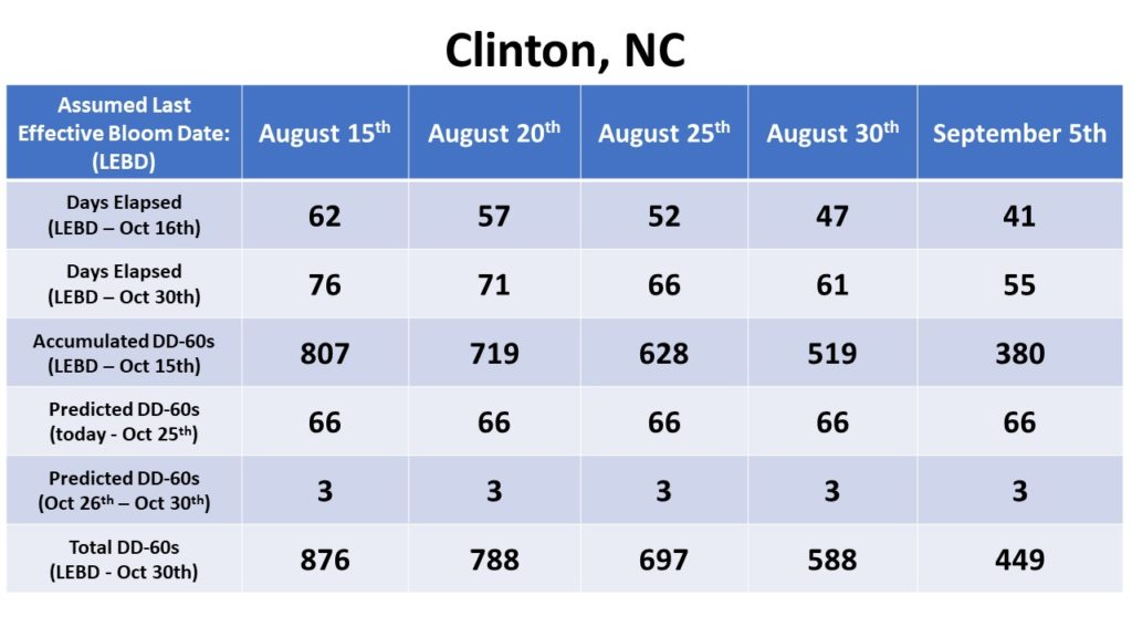 Effective bloom dates for Clinton